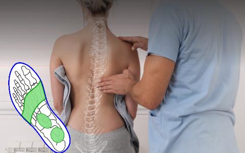 Posturologie 1 E-learning : syndrome postural généralisé
